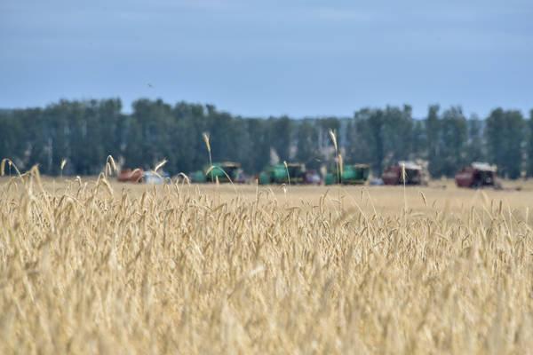 ПрезидентРТ призвал аграриев Елабужского района максимально ускорить темпы уборки урожая